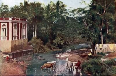 Rio Grande. Mayaguez. Puerto Rico. Caribic islands. American colonialism.