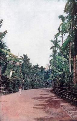 Country road. Phillipines. American colonialism. Creole costumes. Philippine–American War.