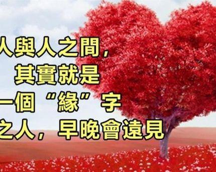 """人和人之間,合不合就一個字,""""緣""""!有緣之人,遲早遇見"""