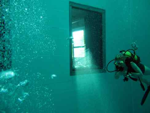 windows Nemo 33