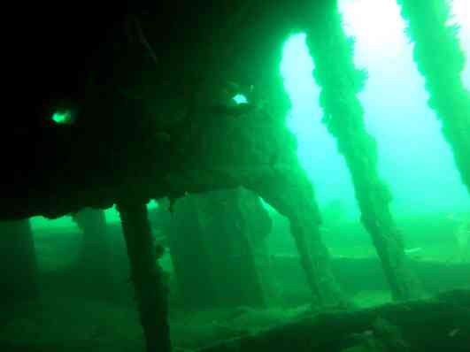 wreck diving goa grande island
