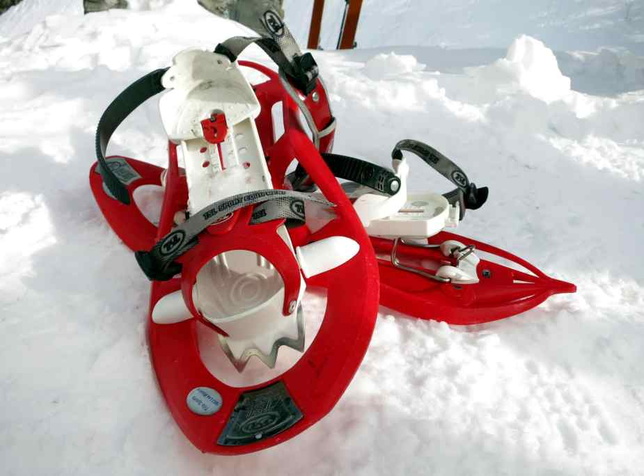 snow shoes Lioson Switzerland