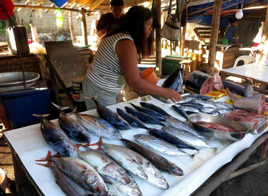 fish market of Bacong village Negros Philippines