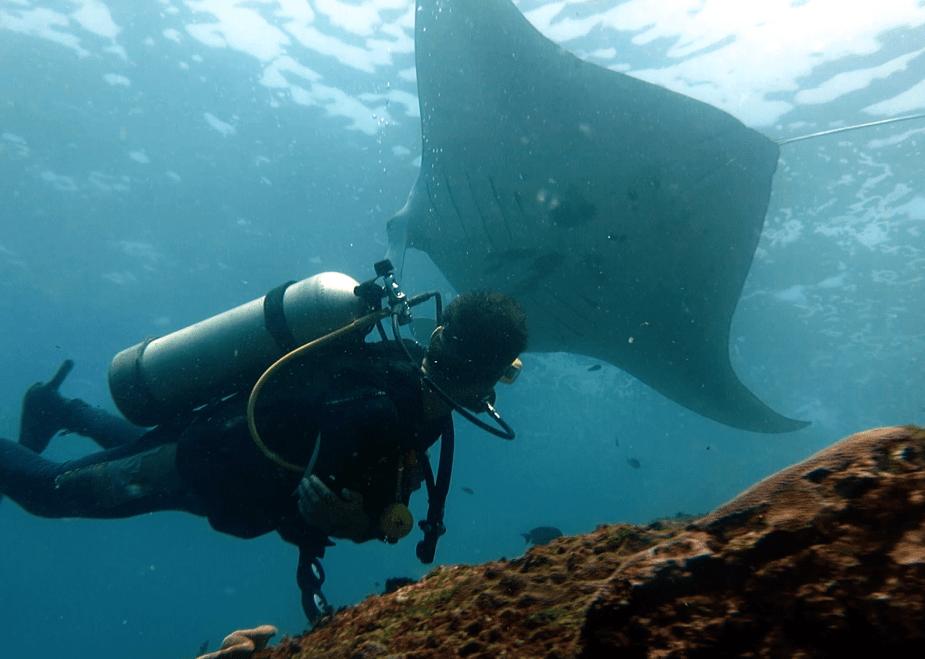 Manta Point Nusa Penida - Bali diving