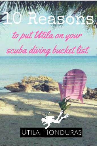 10 Reasons to put Utila Honduras on your scuba diving bucket list