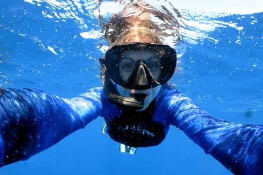 snorkelling to see whale sharks in Utila Honduras
