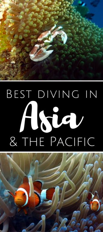 Best diving in Asia Pacific pin1