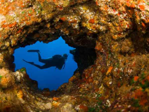 Scuba diving lava tube Hawaii