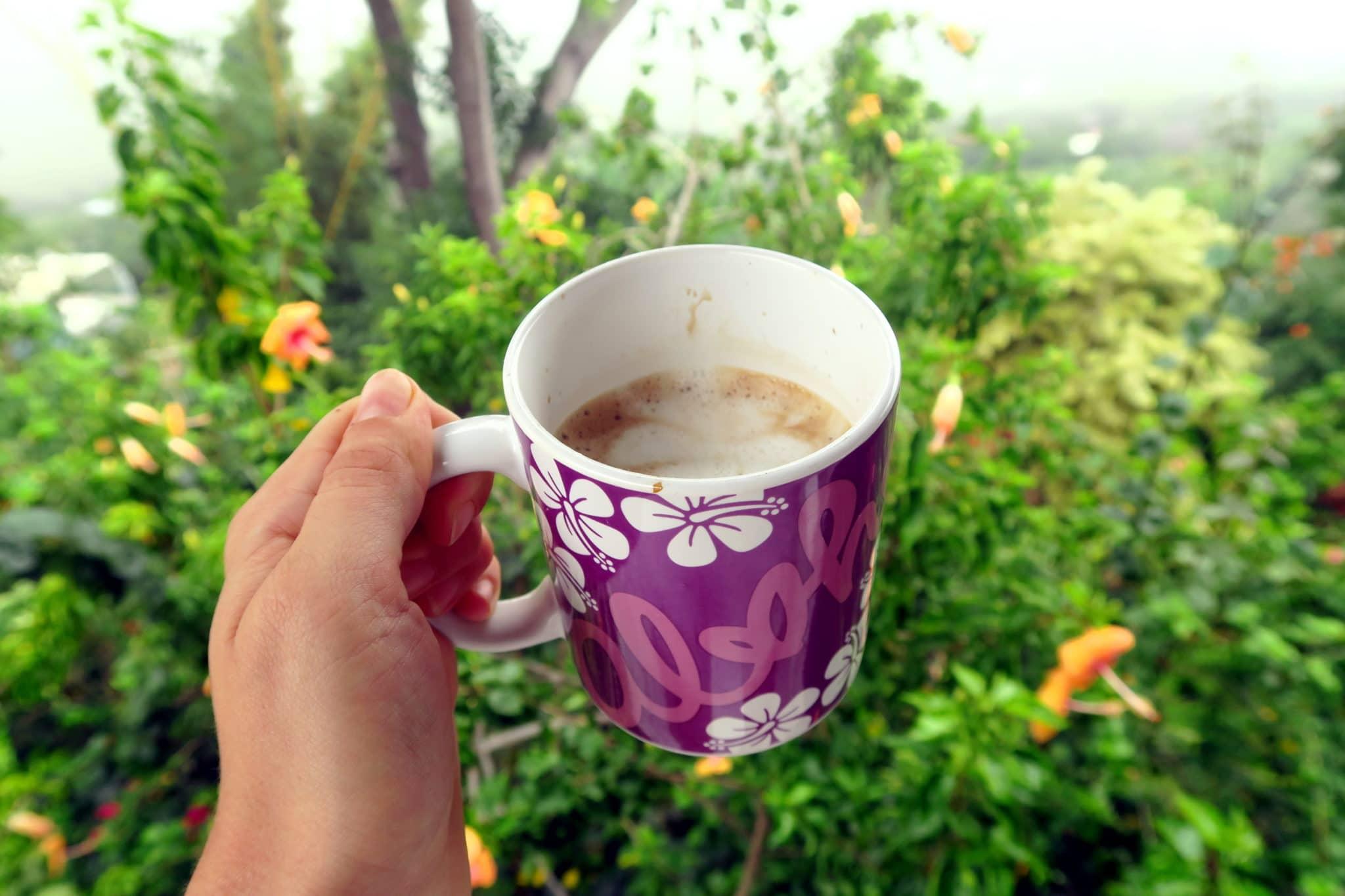 Coffee Shack Kona Big Island Hawaii