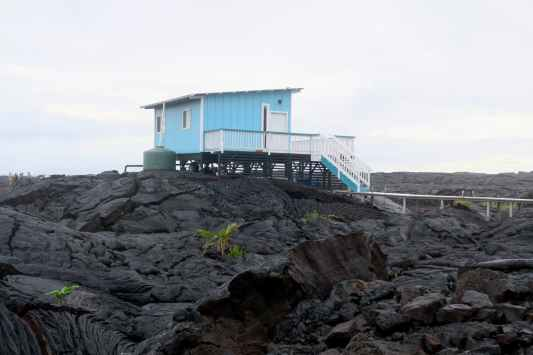 Lava Field Kalapana Big Island Hawaii