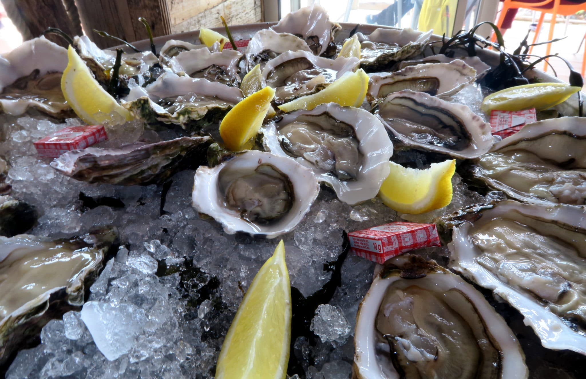 Le St Barth Tarbouriech family Oyster farm restaurant Thau Lagoon France