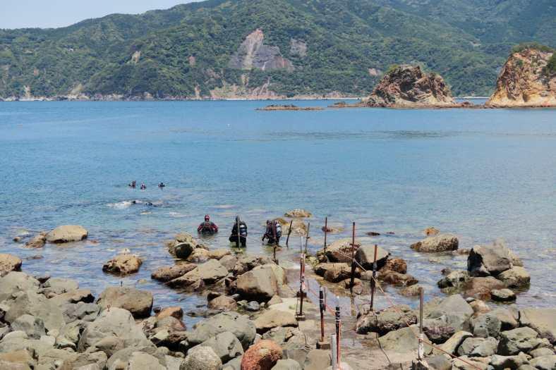 Koganezaki Dive Centre