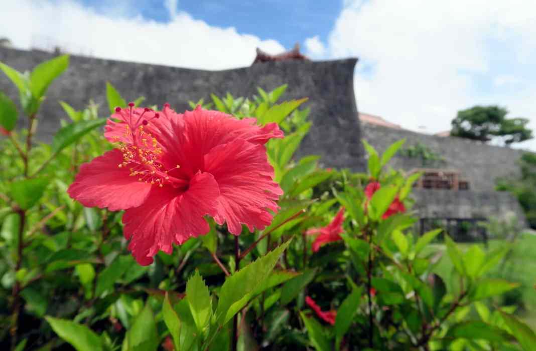 Shuri Castle Naha Okinawa Japan