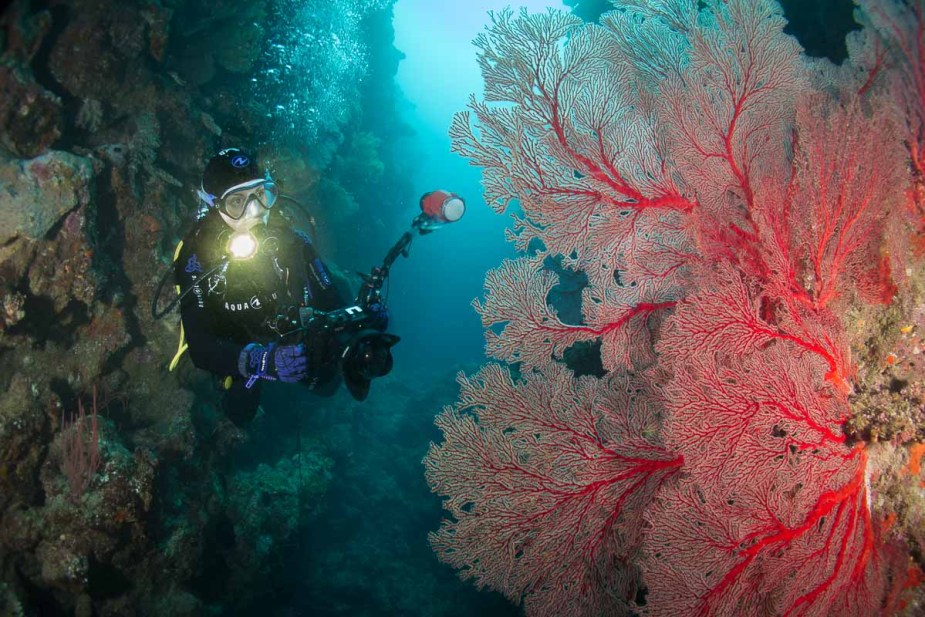 Florine scuba diving in HIenghene New Caledonia