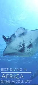 Best diving in Africa