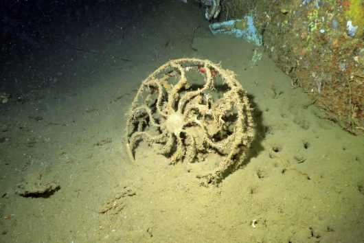 SS President Coolidge Wreck diving Vanuatu