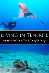 Diving Tenerife