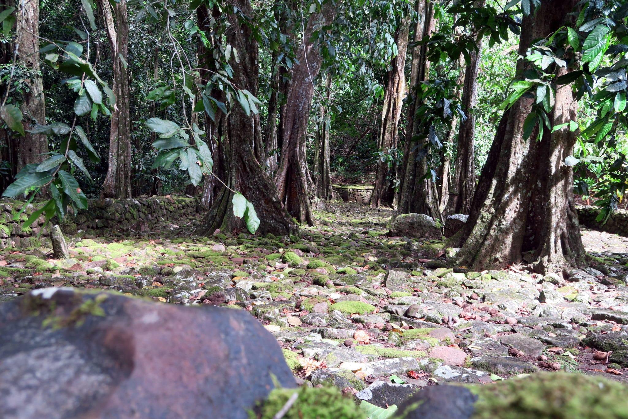 Marae  Moorea French Polynesia