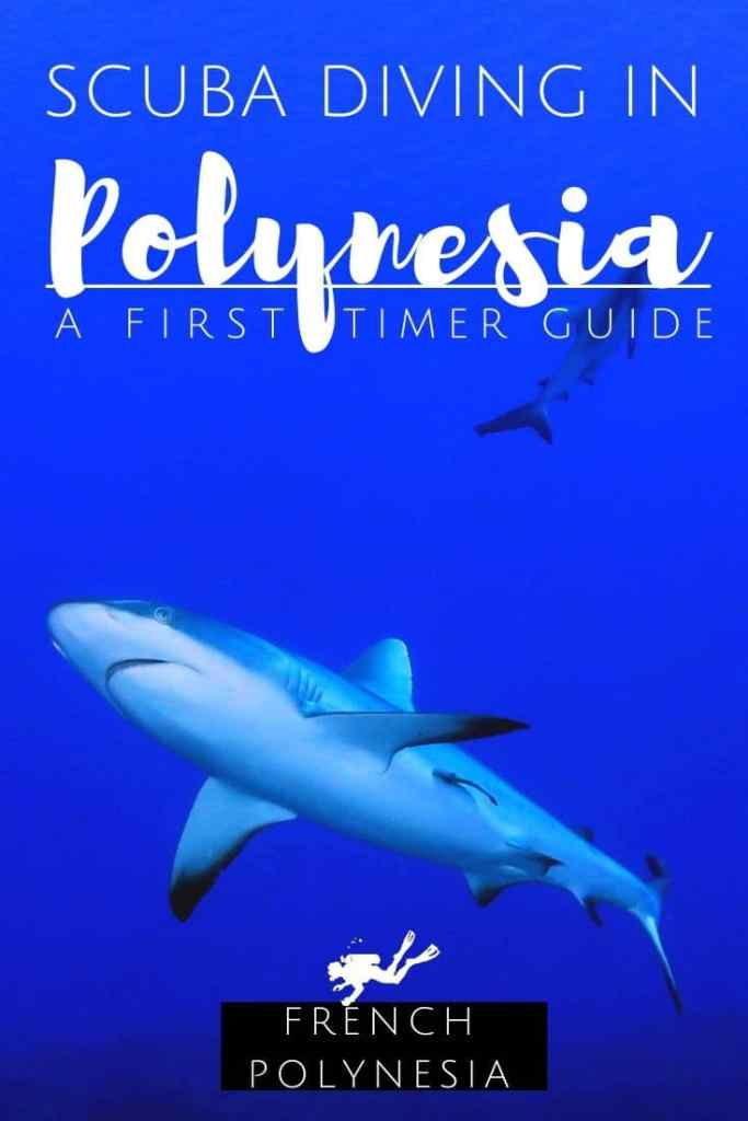 Diving in French Polynesia : a first timer guide