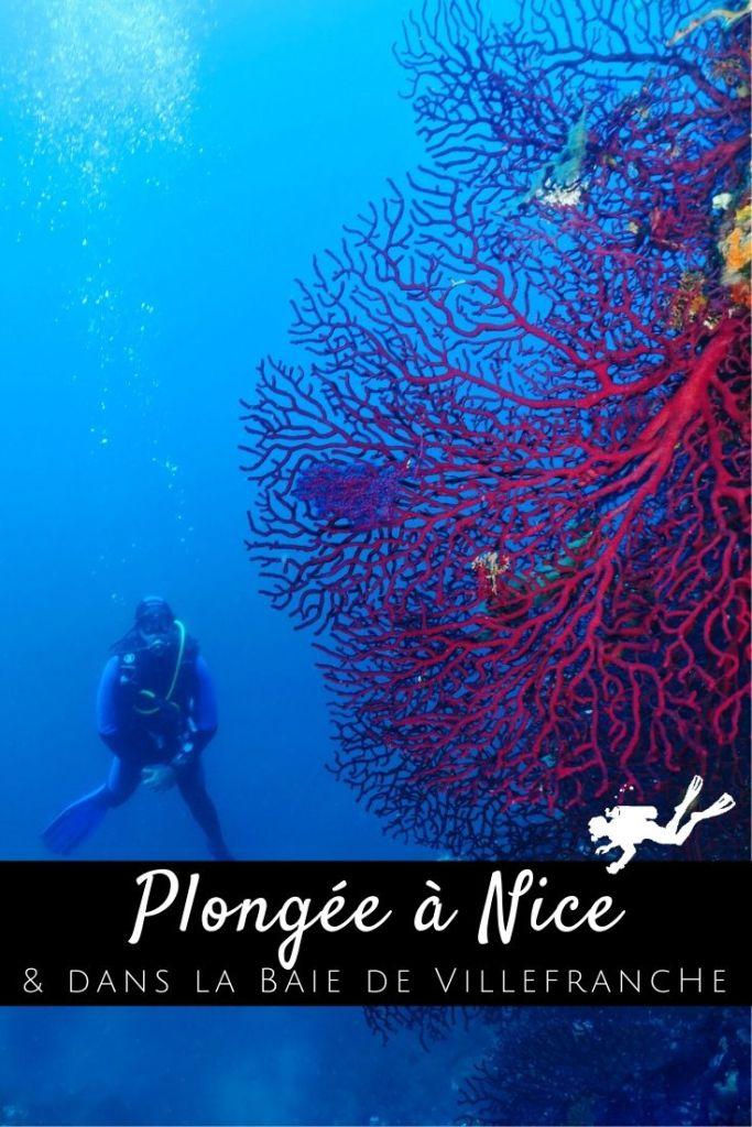 Plongée Nice pin1