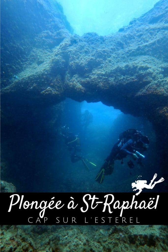 Plongée à Saint-Raphaël - Cap sur l'Estérel - pin2