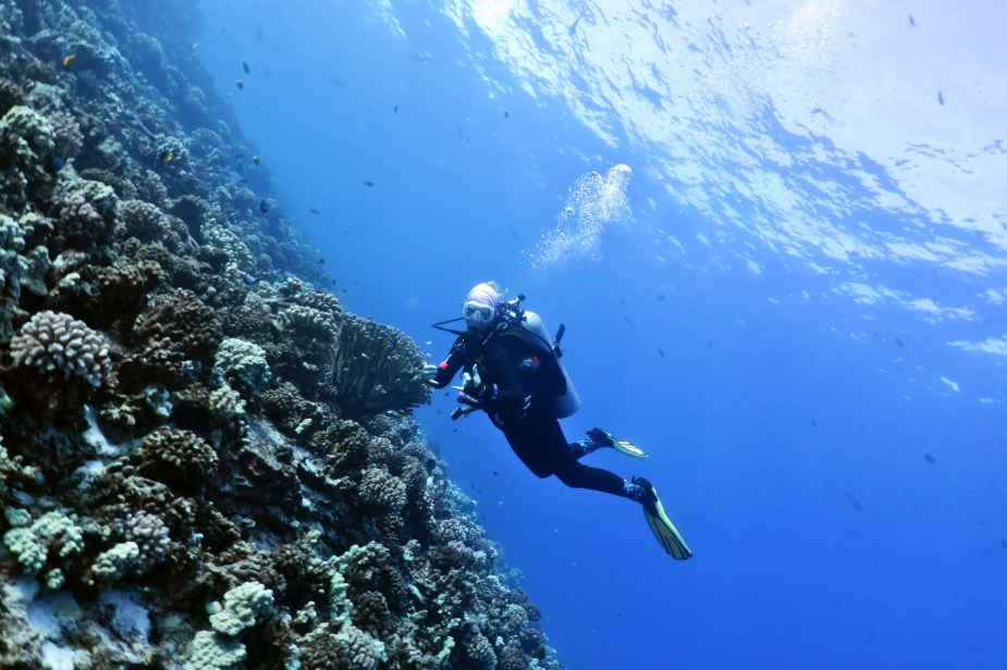 Diving in Maui