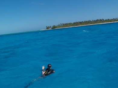 Scuba diving Lighthouse reef Belize