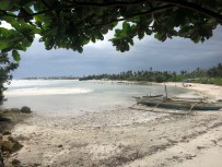 Mangrove & beach Malapascua island Philippines