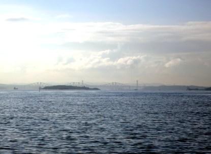 Scuba diving Firth of Forth Scotland