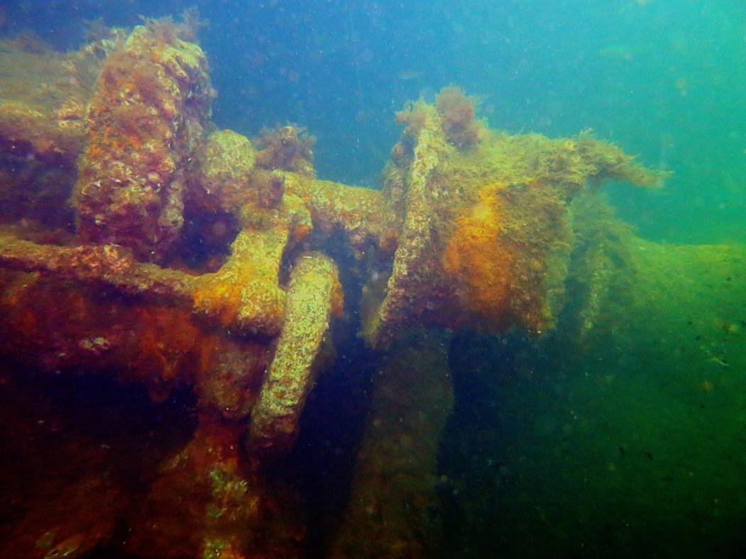 Scuba diving Churchill Barriers Orkney Scotland