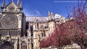 Lovely southern facade of Notre Dame