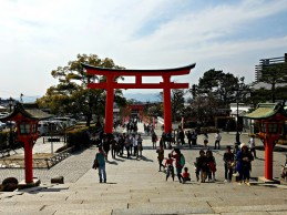 The huge torii at the shrine's main entrance.