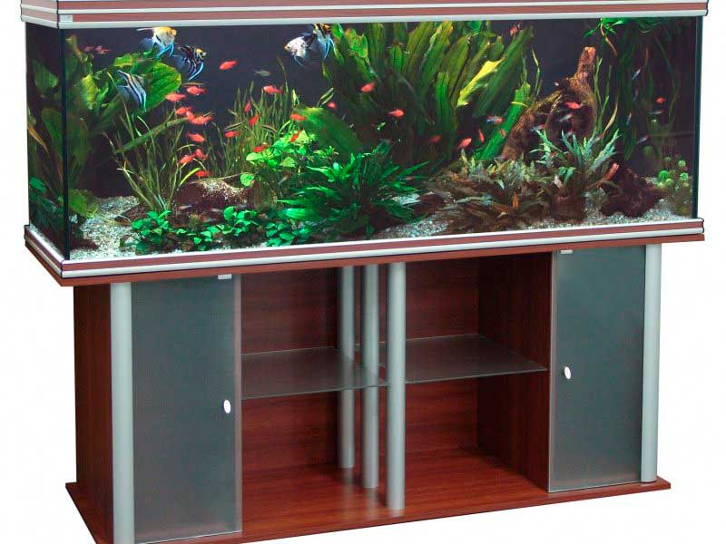 Tumba-pod-akvarium