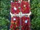 бране на ягоди в Испания