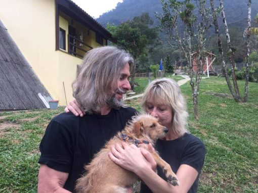 jan and carlos, founders of dogs in brazil