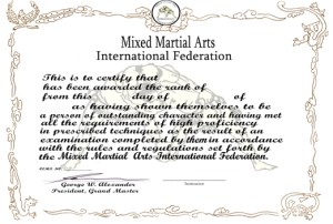Mixed Martial arts certificate thumb