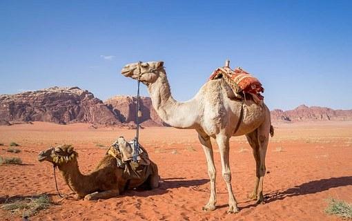 10 Insidertipps und sightseeing Hotspots für deine Jordanien-Reise