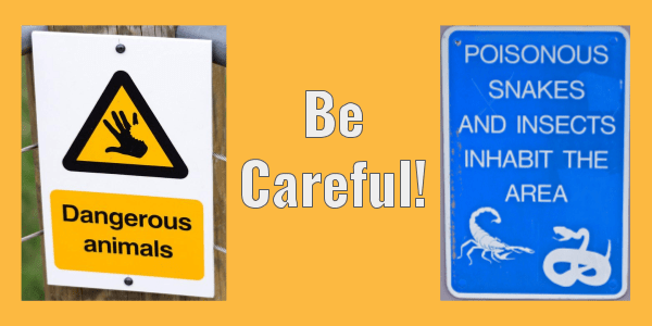 2 adjectives with the suffix ~ous. Dangerous and poisonous.