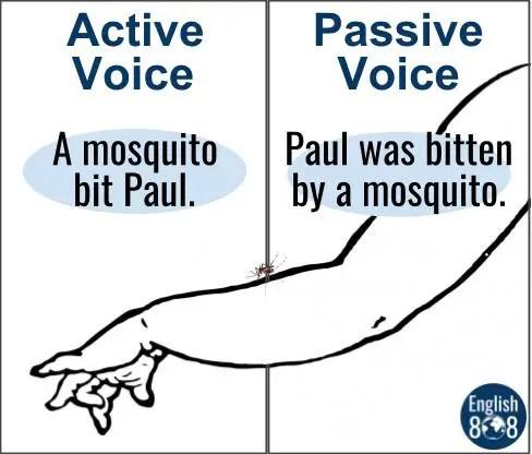 mosquito passive