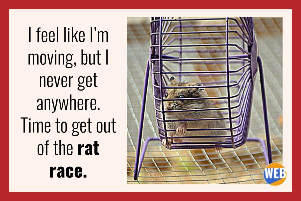 Get out of the rat race.