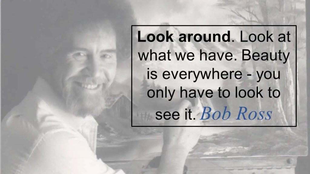 Look around. Beauty is everywhere.
