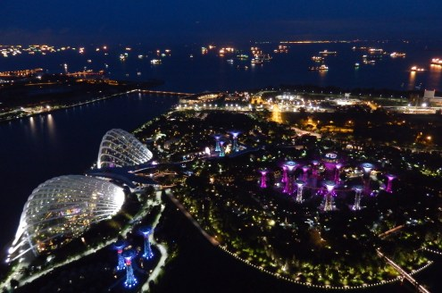 SkyPark view of Gardens by the Bay