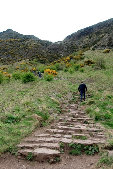 Arthurs Seat Stairs