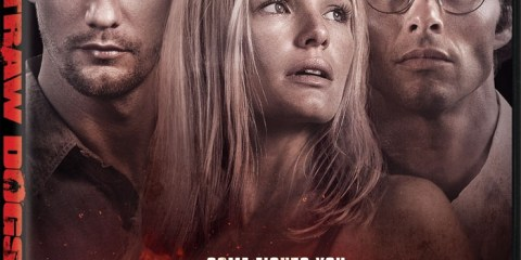 Straw Dogs (2011) BRRip 420p 300MB Dual Audio Esubs