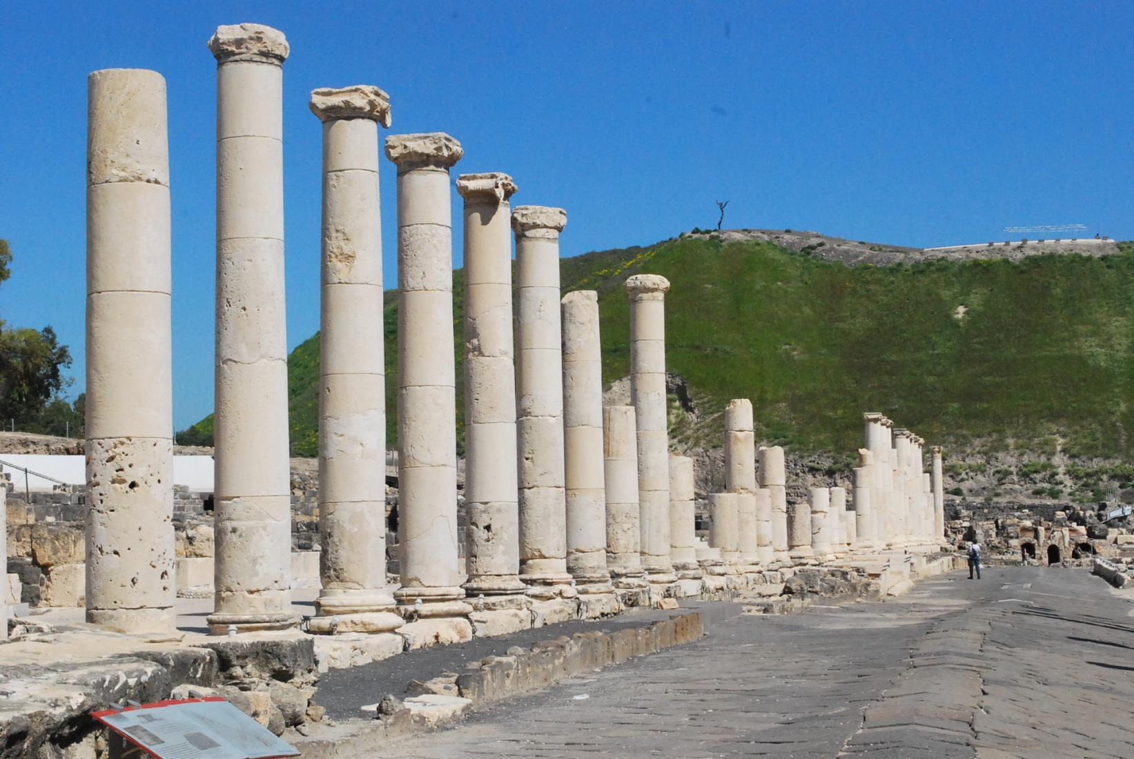 Palladius Street in Israel's Beit She'an National Park.  Photo:  Tonya Fitzpatrick
