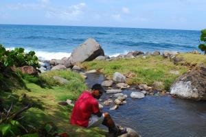 Hiking Dominica's national trail