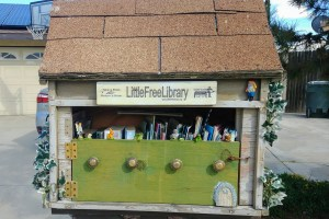 Little free library box. Photo: Breana Johnson