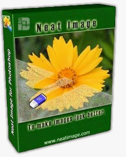 Neat Image Pro 8. crack download