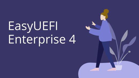 EasyUEFI Enterprise 4