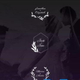 Videohive Wedding Titles Free Download